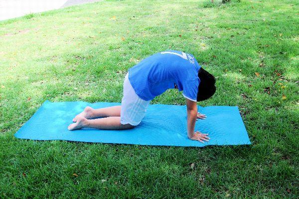 matome_yoga01.jpg