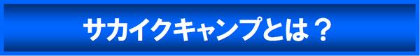 sakaikucamp-2013summer2.png