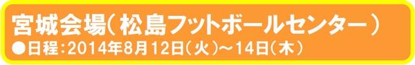 summercamp_miyagi.jpg