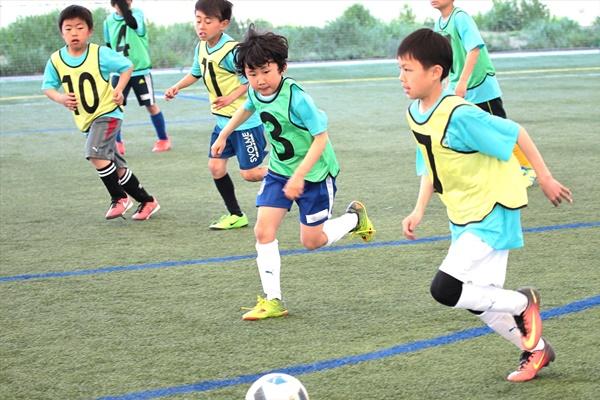 japan_sports_agency1_01.jpg