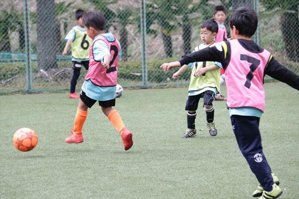 shimazawa_column20.jpg