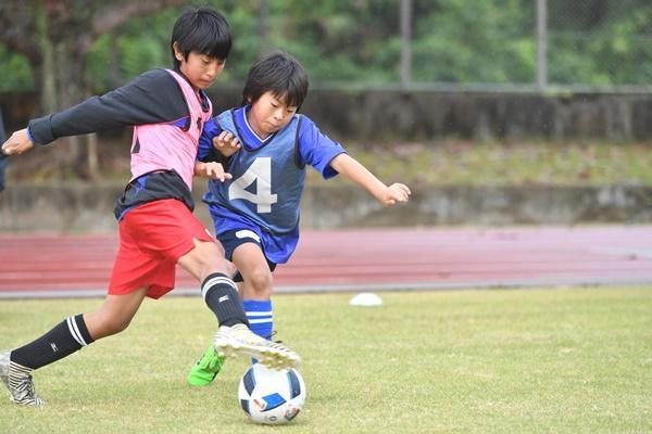 shimazawac_column36_02.JPG