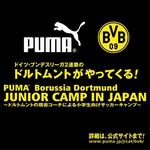 PUMA_BVB.JPG
